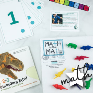 books, flash cards and counters